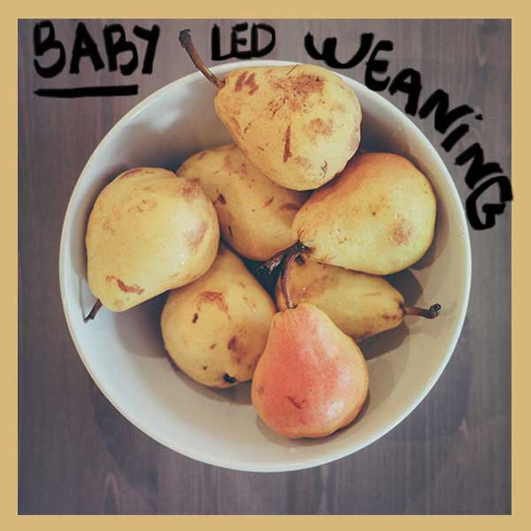 Baby Led Weaning: mi experiencia